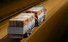 Os benefícios da coleta de paletes de madeira